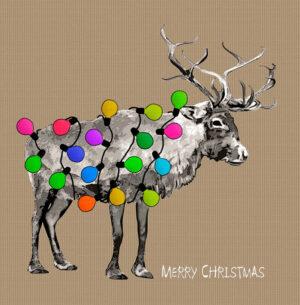 Christmas 044 2